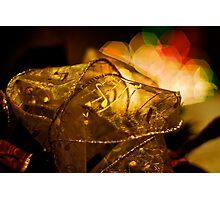 Christmas Ribbons & Lights Photographic Print
