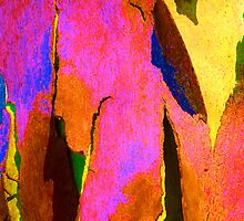 Summer Eucalypt Abstract  by Margaret Saheed