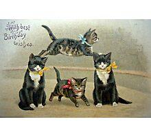 Birthday Kittens Photographic Print