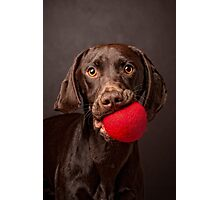 I wanna play ball! Photographic Print