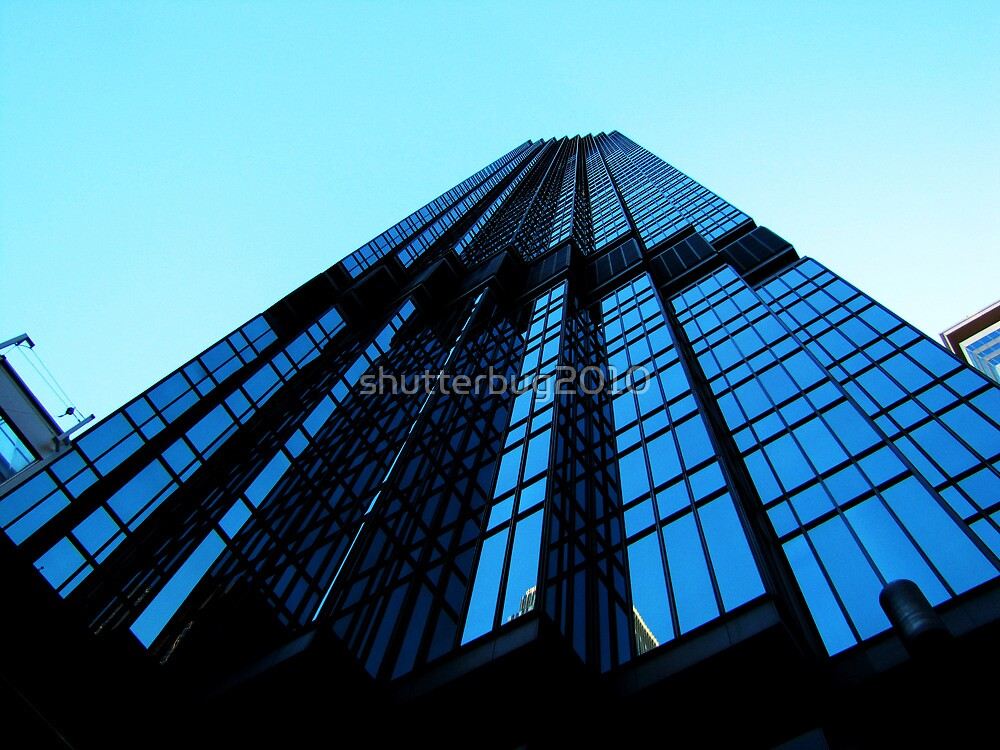 Looking Up by shutterbug2010