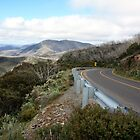 Mt Hotham - Victorian High Country by OzNatureshots
