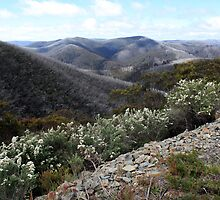 Mt Hotham - victorian High Country by Emmy Silvius