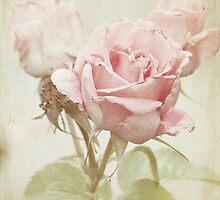 Aging Beauty by KBritt