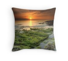 """Moss-scape"" ∞ Vincentia, NSW - Australia Throw Pillow"