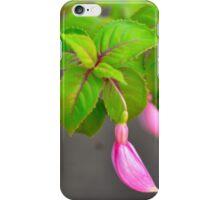 Un día de primavera.... iPhone Case/Skin