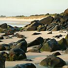 Shelly Beach - Ballina Northern NSW by Emmy Silvius