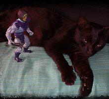 Skeletor & Blackcat by garigots
