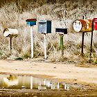 Roadside Letterboxes by Cathryn O'Donnell