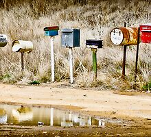 Roadside Letterboxes by Cate O'Donnell