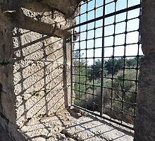 a view from a window !  by innitman