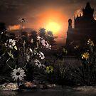 Saint Michaels Castle. by alaskaman53