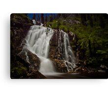 Steavenson Falls I Canvas Print
