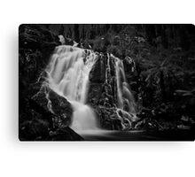 Steavenson Falls I B&W Canvas Print