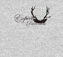 Expecto Patronum Deer Horn Women's Fitted V-Neck T-Shirt