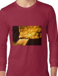 Born of Chaos Long Sleeve T-Shirt