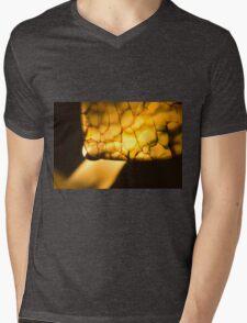 Born of Chaos Mens V-Neck T-Shirt