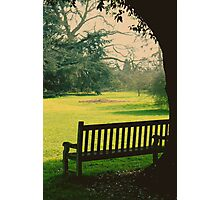 Bench under a tree Photographic Print