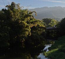 River Cuale in the morning light - Rio Cuale en la luz de la mañana by Bernhard Matejka