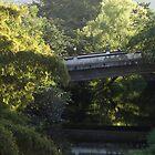 Bridge Mirroring - Puente En Reflejo by Bernhard Matejka