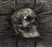 Karbon Kast Skull by Graphicsbyte
