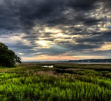 Summer Sunrise Over Broad Creek by jimcrotty