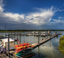 Broad Creek Marina by jimcrotty