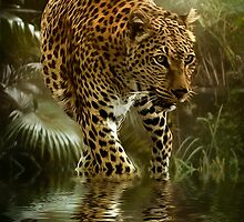 Jaguar by Tarrby
