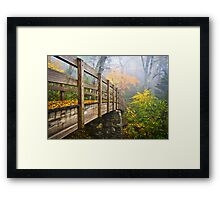 Tanawha Trail Foot Bridge - Rough Ridge Autumn Foliage NC Framed Print