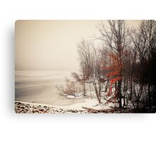 A foggy January morning Canvas Print