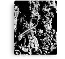 Reptile Noir Canvas Print