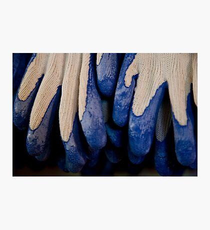 Udderly Blue, Knit Gloves Photographic Print