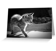 Who`s there Greeting Card