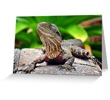 Bearded Water Dragon Greeting Card