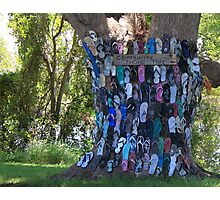 COMMUNITY THONG TREE Photographic Print