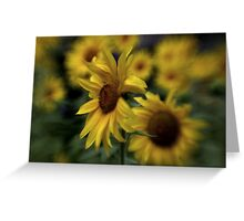 ~ Sunny Side ~ Greeting Card