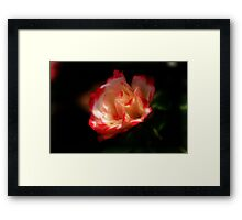 Beauty in any Color Framed Print