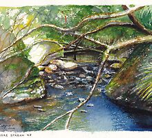 Wairere Sunlit Boulders by Dai Wynn