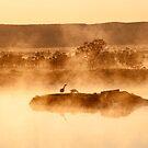 Geese in the Mist by Julia Ott