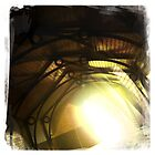 Into the Light by Shaynelee