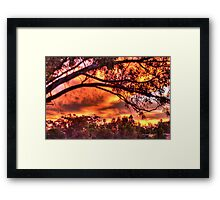 sunset through the trees #2 Framed Print