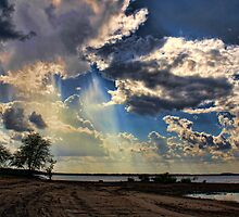 Raining Rays by Carolyn  Fletcher