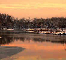Winter Sunrise by Carolyn  Fletcher