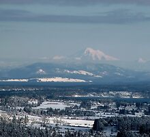 Looking to Mount Baker Washington State, USA by AnnDixon