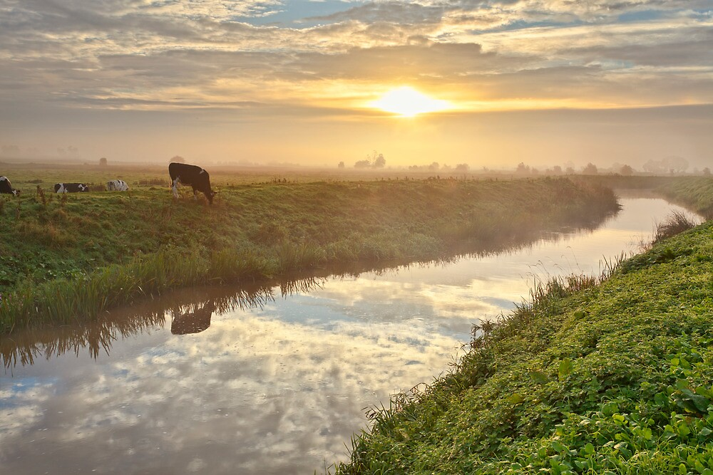 Magical sunrise reflections on the Brue by Robin Whalley