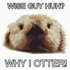 Why I Otter!!! by danzzig