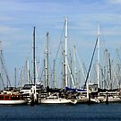 Corio Bay - Geelong by Chris Chalk