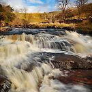 Falls in the Dales by Robin Whalley