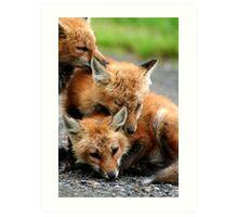 RED FOX DREAMING Art Print