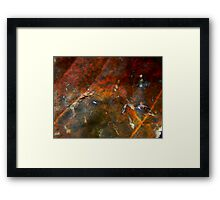 The Fallen (1045) Framed Print